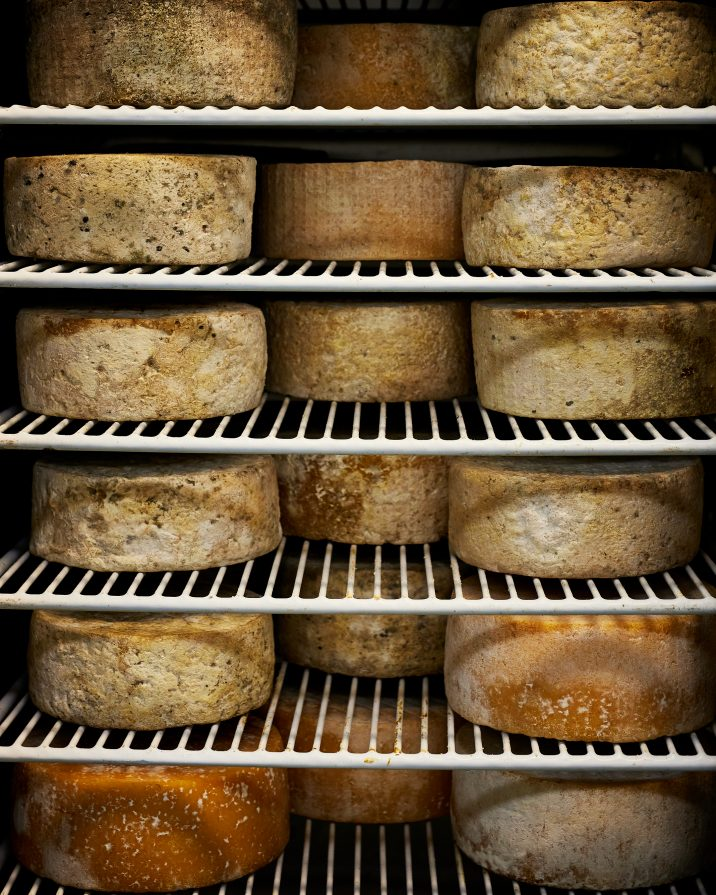 Cheese Aging - Boatshed cheese